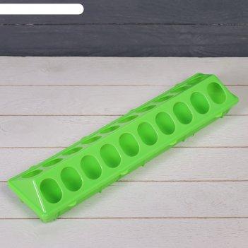 Кормушка-поилка для перепелов, 20 ячеек, лотковая, пластик, цвет микс