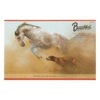 Альбом для рисования а4, 20 листов на клею лошадь и собака, обложка картон