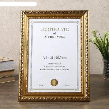 Фоторамка пластик формат а4 штрихи золото 35х26,5 см