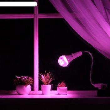 Светильник для растений 12 вт, 9 мкмоль/с, гибкая ножка 30 см, выкл на кор