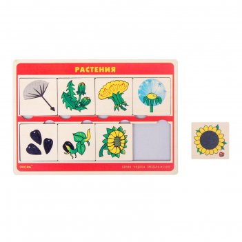 Рамка-вкладыш чудеса преображений: растения