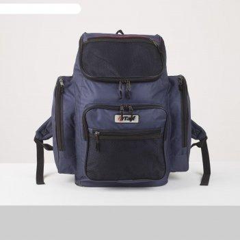 Рюкзак тур агир 2, 40л, отд на молнии, 3 н/кармана, синий