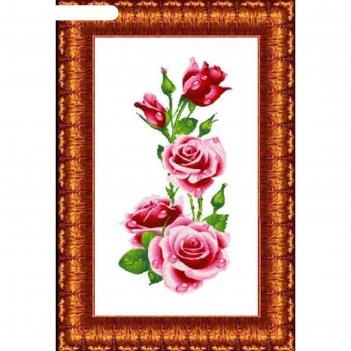 Схема для вышивания крестиком «розы», канва 37х70 см