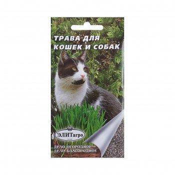 Семена трава для кошек и собак, 10 г