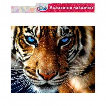 Алмазная мозаика б/подр., частич.заполн. тигр 40*50 см 87127