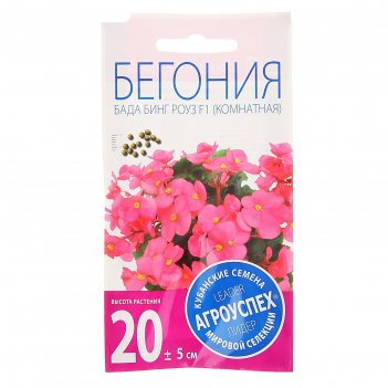 Семена комнатных цветов бегония бада бинг роуз, вечноцветущая, 10 шт