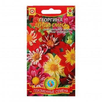 Семена цветов георгина денди, о. 13 шт