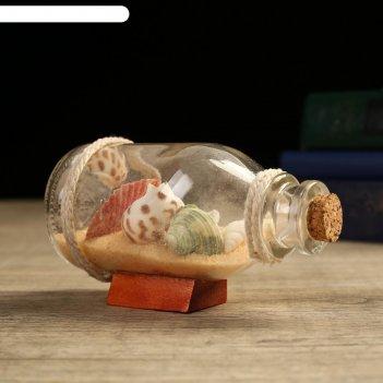 Сувенир в бутылке ракушки 12*6*6см, микс