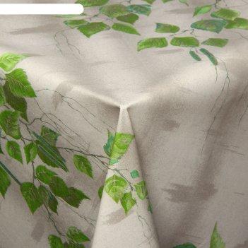 Клеенка столовая на ткани березка, рулон 25 м