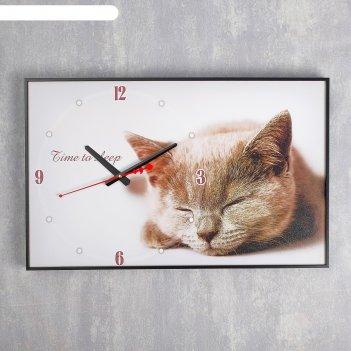 Часы-картина настенные прямоугольные серая кошка, 37х60 см