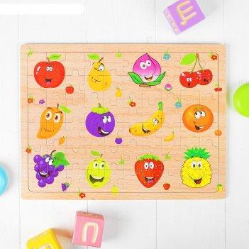 Пазл забавные фрукты
