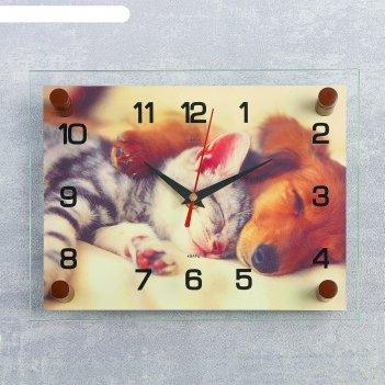 Часы настенные, серия: животный мир, котёнок и собачка, 20х26 см  микс
