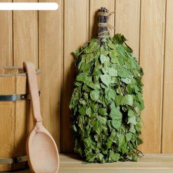 Веник для бани зелёный шум берёзовый с эвкалиптом, в индивидуальной упаков