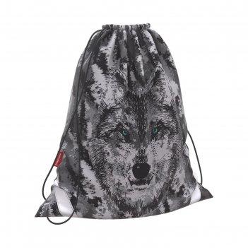 Мешок для обуви, 440 х 365 мм, erich krause, wolf, увеличенные габариты, с
