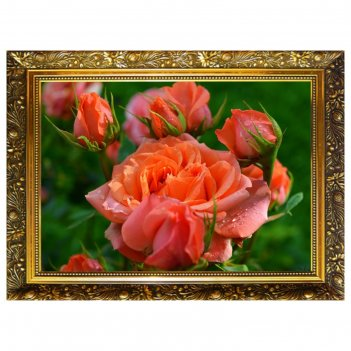 Алмазная мозаика королева сада  29,5x20,5см, 25 цветов nr- 58