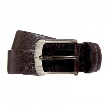 Ремень мужской джон, винт, пряжка под тёмный металл, ширина - 3,8см, корич