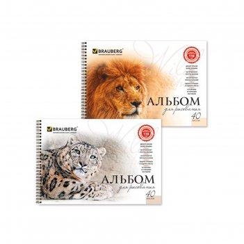 Альбом для рисования brauberg «благородные кошки», а4, 40 листов на гребне