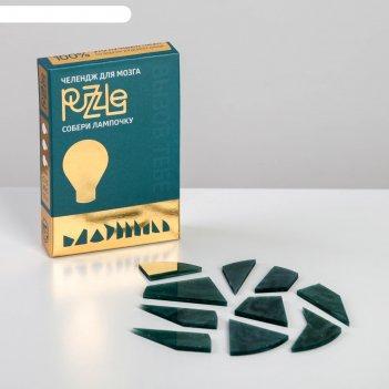 Челендж для мозга puzzle. собери лампочку