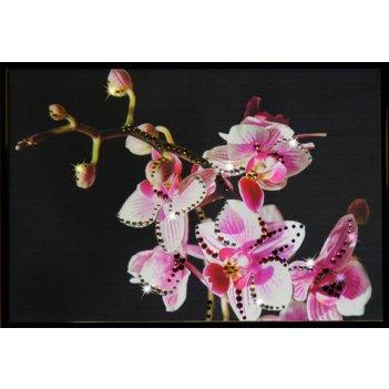 Картина сваровски - маленькая орхидея