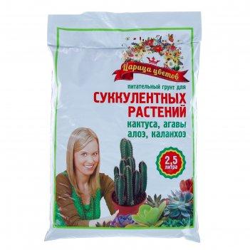Грунт царица цветов для суккулентов, 2,5 л.   2871212