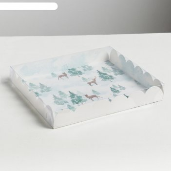 Коробка для кондитерских изделий с pvc крышкой winter huge , 21 x 21 x 3 с