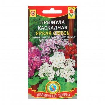 Семена цветов примула каскадная яркая смесь, 18 шт
