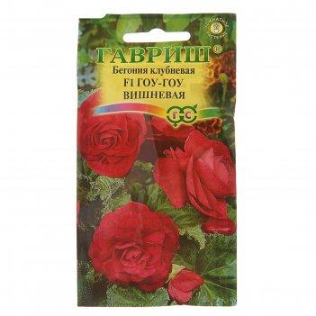 Семена комнатных цветов бегония гоу-гоу вишневая f1 пробирка, гранулы, мн,