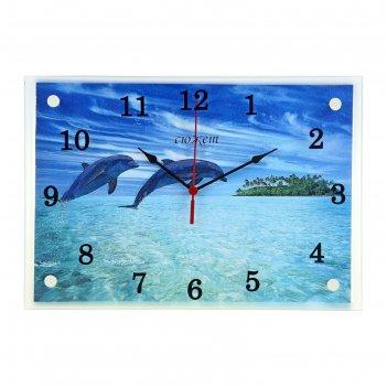 Часы настенные прямоугольные дельфины, 25х35 см