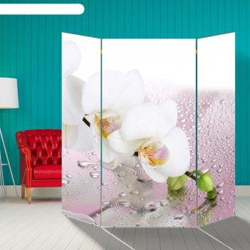 Ширма орхидея и капли воды, 160 x 160 см