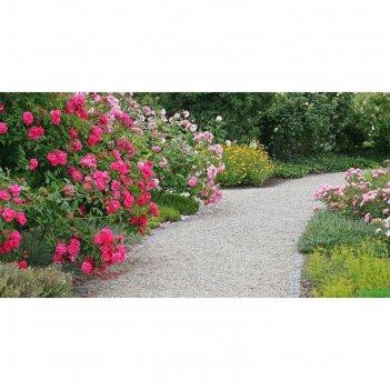 Фотобаннер, 250 x 150 см, с фотопечатью, «сад»