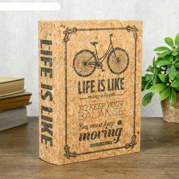 Шкатулка-книга дерево кожзам под пробку велосипед 23х17х6 см