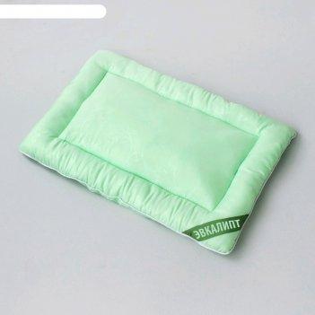 Подушка «эвкалипт», размер 40 x 60 см