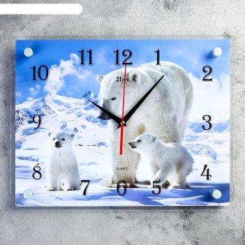 Часы настенные, серия: животный мир, белые медведи, 30х40  см, микс