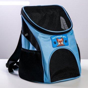 Рюкзак для переноски животных лучший друг 31*23*30 см