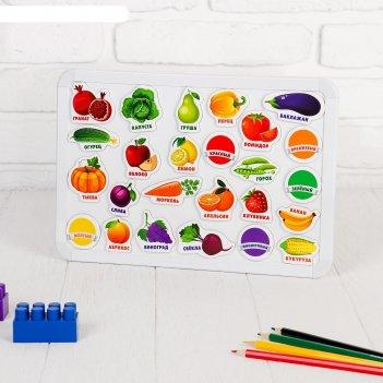 Развивающие магниты изучаем цвета и овощи - фрукты (набор 25 шт)