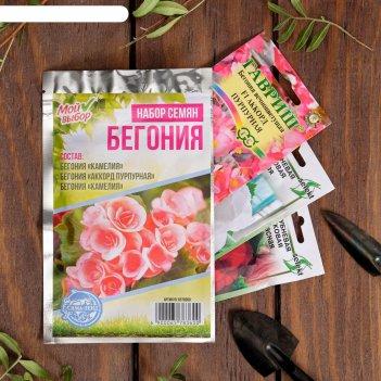 Наборы семян цветов бегония хит продаж, 3 сорта