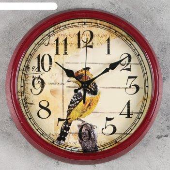 Часы настенные, серия: животный мир, хохлатка, d=33.5 см микс