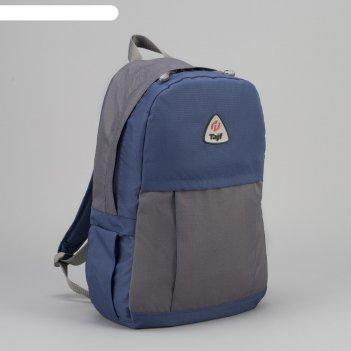 Рюкзак туристический, 21 л, отдел на молнии, наружный карман, цвет синий/с