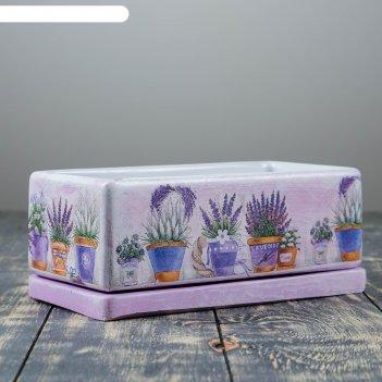 Горшок цветочный кактусник вазоны, 24*12/h9см