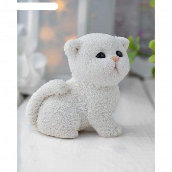 Силиконовая форма для мыла котенок британец