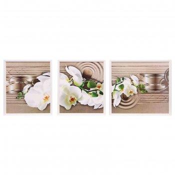 Модульная картина ветка белой орхидеи 30*35,30*35,39*35,  35*100 см