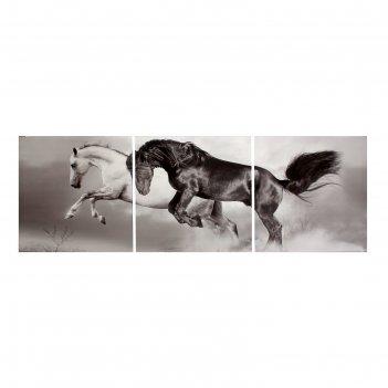 Модульная картина на холсте с подрамником скакуны: чёрный и белый