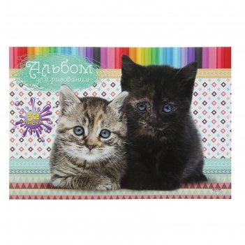 Альбом для рисования а4, 32 листов на клею «котята и цветные карандаши», о