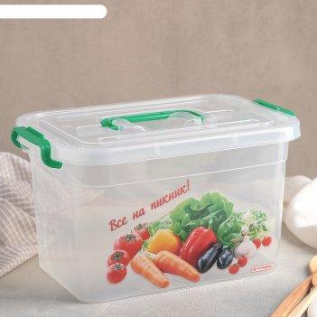 Контейнер пищевой 6,5 л все на пикник, рисунок микс