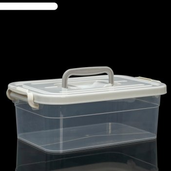 Контейнер для хранения, 4 л, 31x20x10,5 см, цвет прозрачно-серый