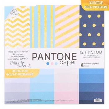 Набор бумаги для скрапбукинга с фольгированием pantone paper, 12 листов 30
