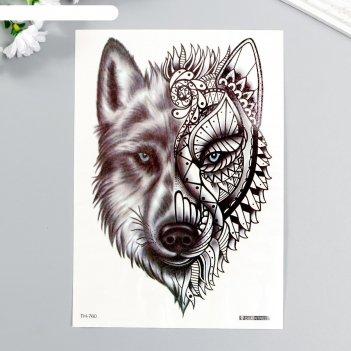 Татуировка на тело чёрная волк с голубыми глазами 21х15 см
