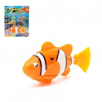 Аквариумная рыбка клоун, плавает в воде, работает от батареек