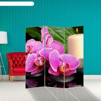 Ширма орхидея со свечой, 160 x 150 см