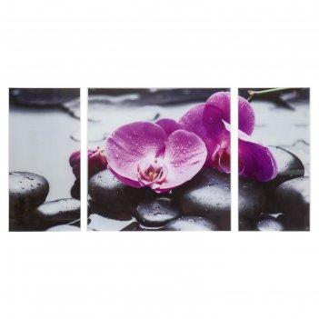 Модульная картина на стекле фиолетовые орхидеи на камнях